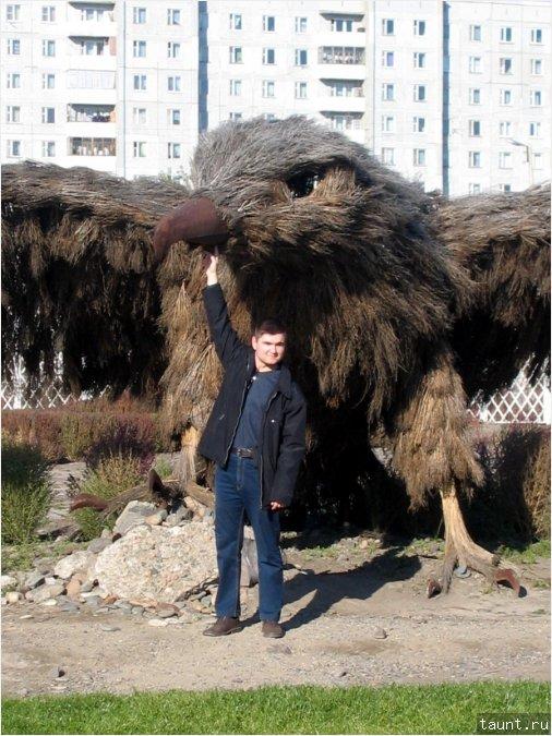 Орел и я