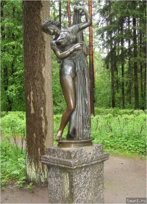 Павловский парк венера фото