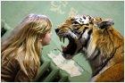 Чучело тигра