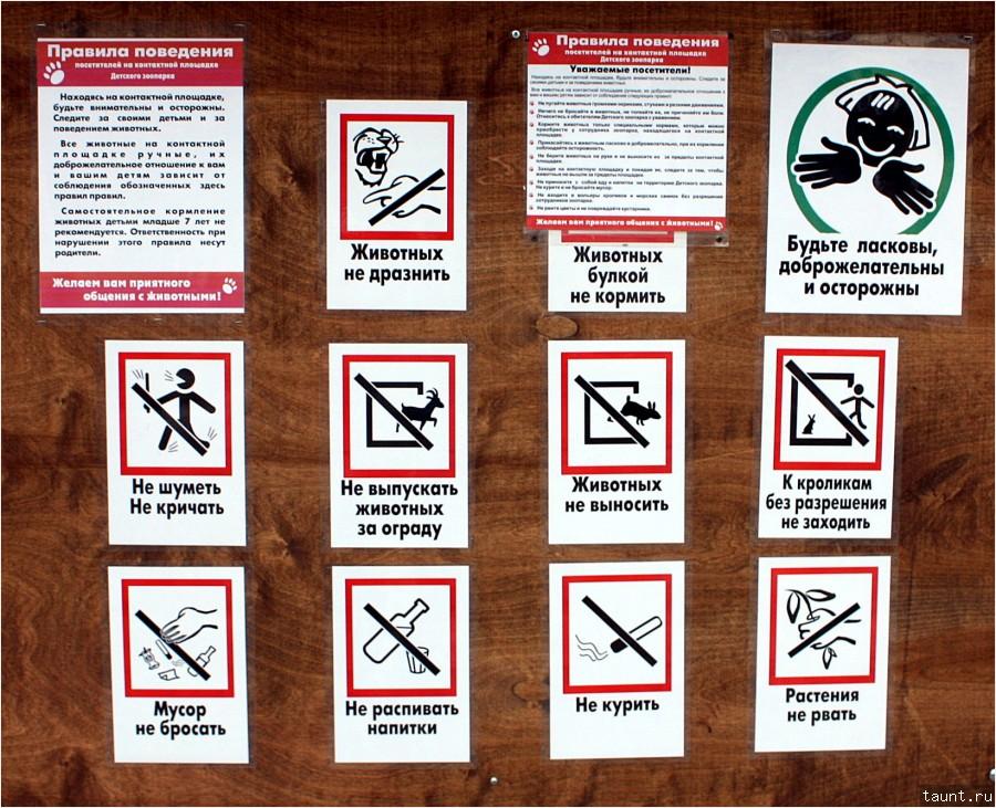 назначению правила поведения в музее занятие для малышей функциям Основные функции