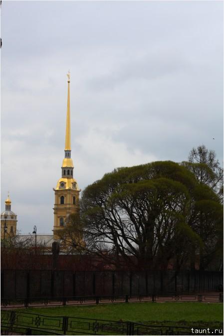 Вид на Петропавловку
