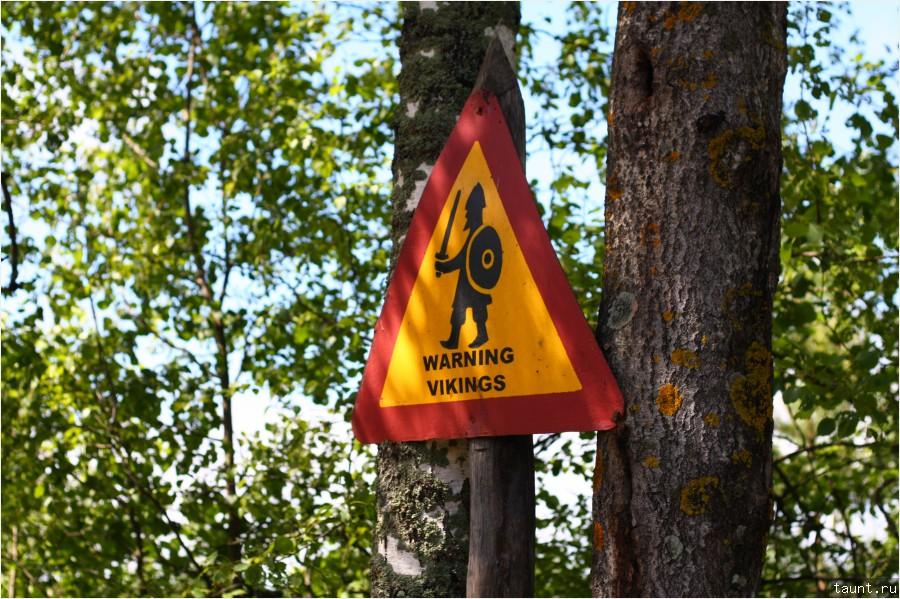 Осторожно Викинги