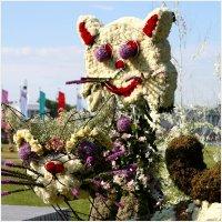 Фестиваль цветов