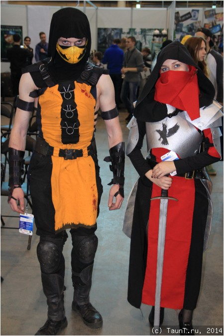 Mortal kombat и девушка-рыцарь