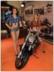 Девченки Harley Davidson
