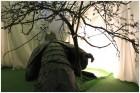 Поверженная статуя германского воина
