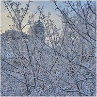 Зимний вид из домашнего окна